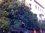 Seville Pt 1