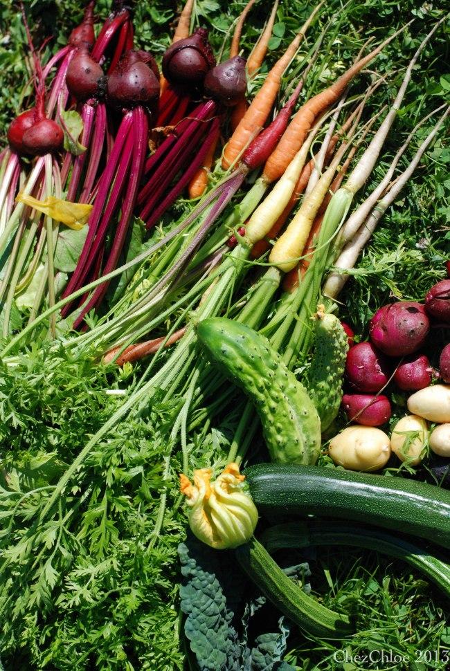 Harvest dinner 7-7-2013-2