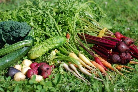 Harvest dinner 7-7-2013
