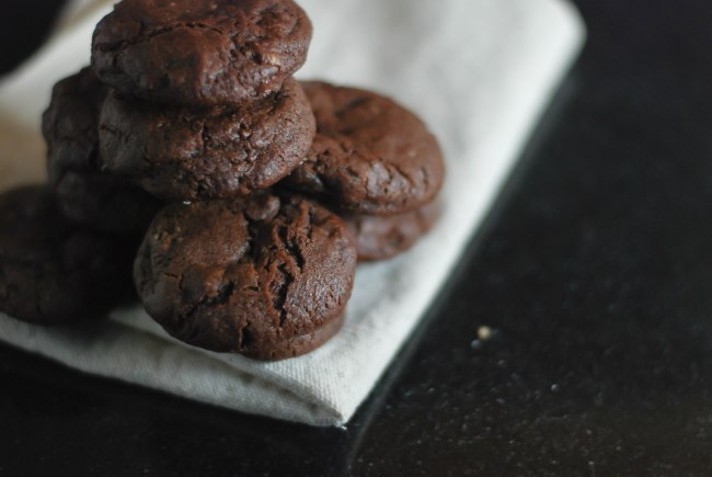cholcolate ginger cookies-12