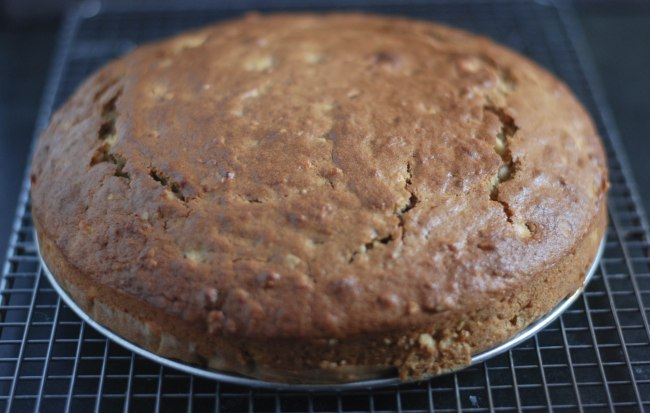 Applesauce cake-12