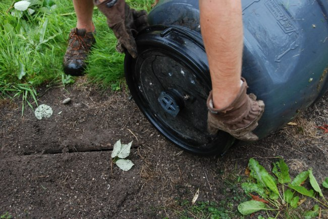 compost  wendyellenthomas.com-3