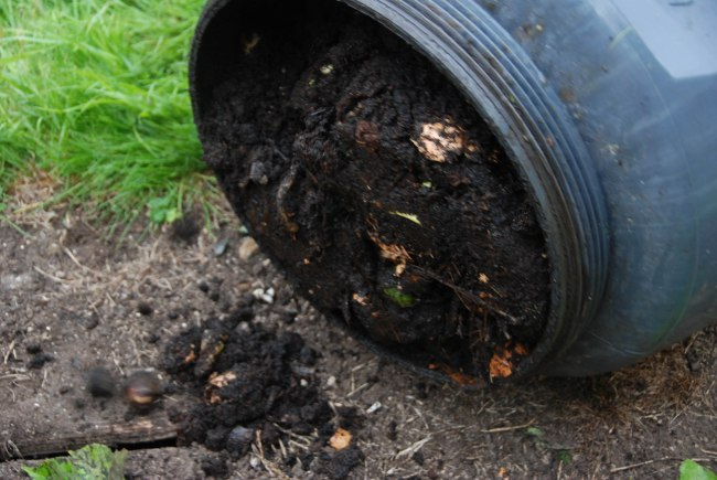 compost  wendyellenthomas.com-4