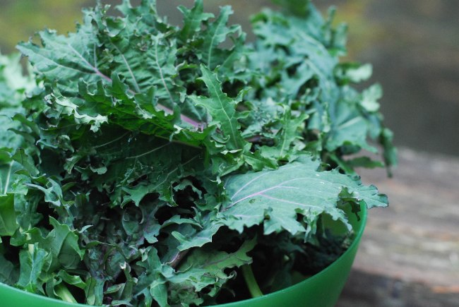 White bean kale sausage soup @wendyellenthomas.com-3