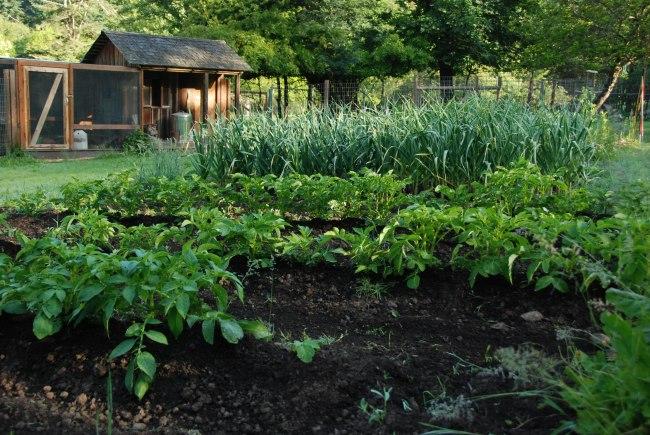 garden 6-4-15-6