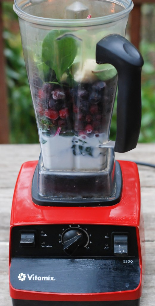 cranberry-blueberry-smoothie-6
