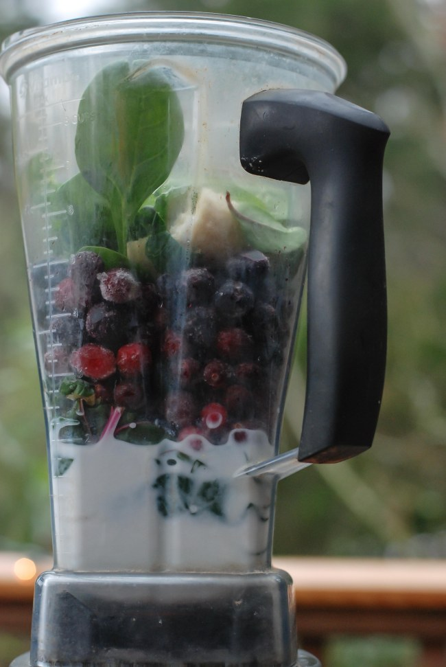 cranberry-blueberry-smoothie-8