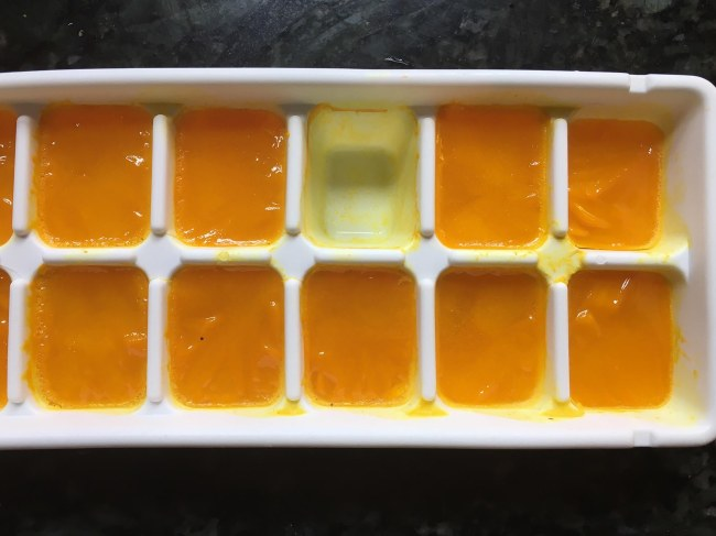 frozen ginger and turmeric shots